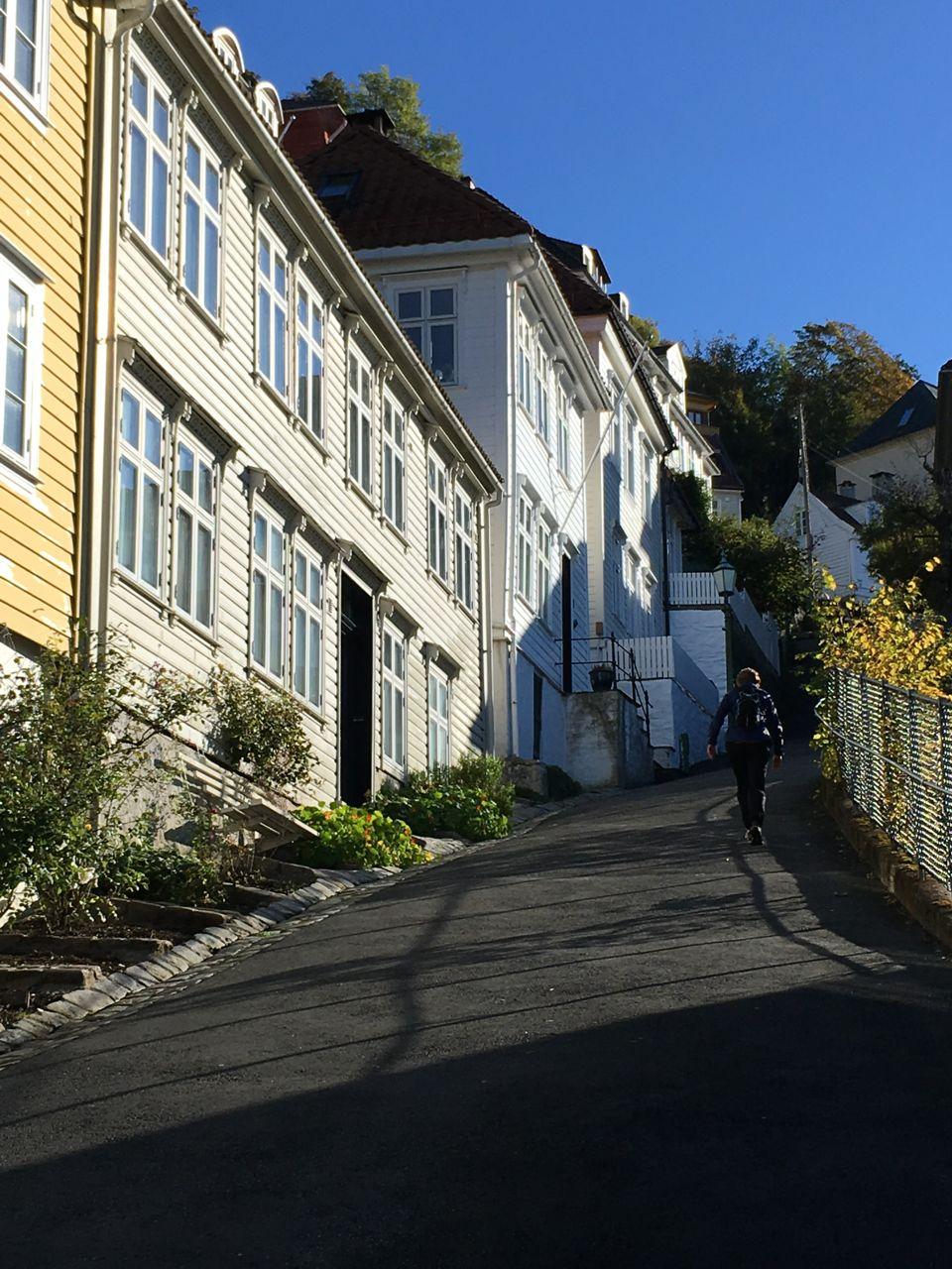 Fløyen by foot. Upward Skivebakken lane