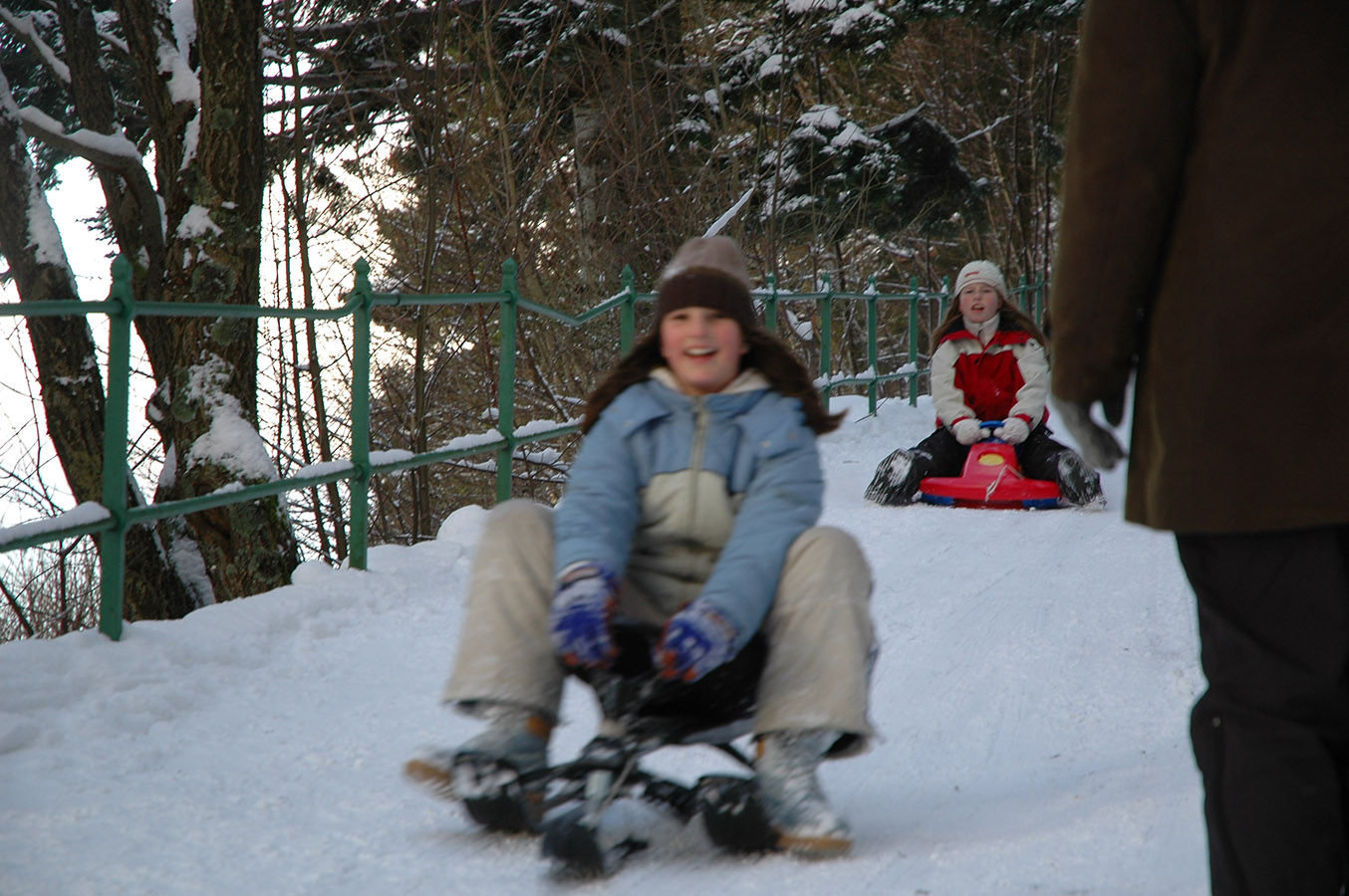 Fløyen, sledding downhill