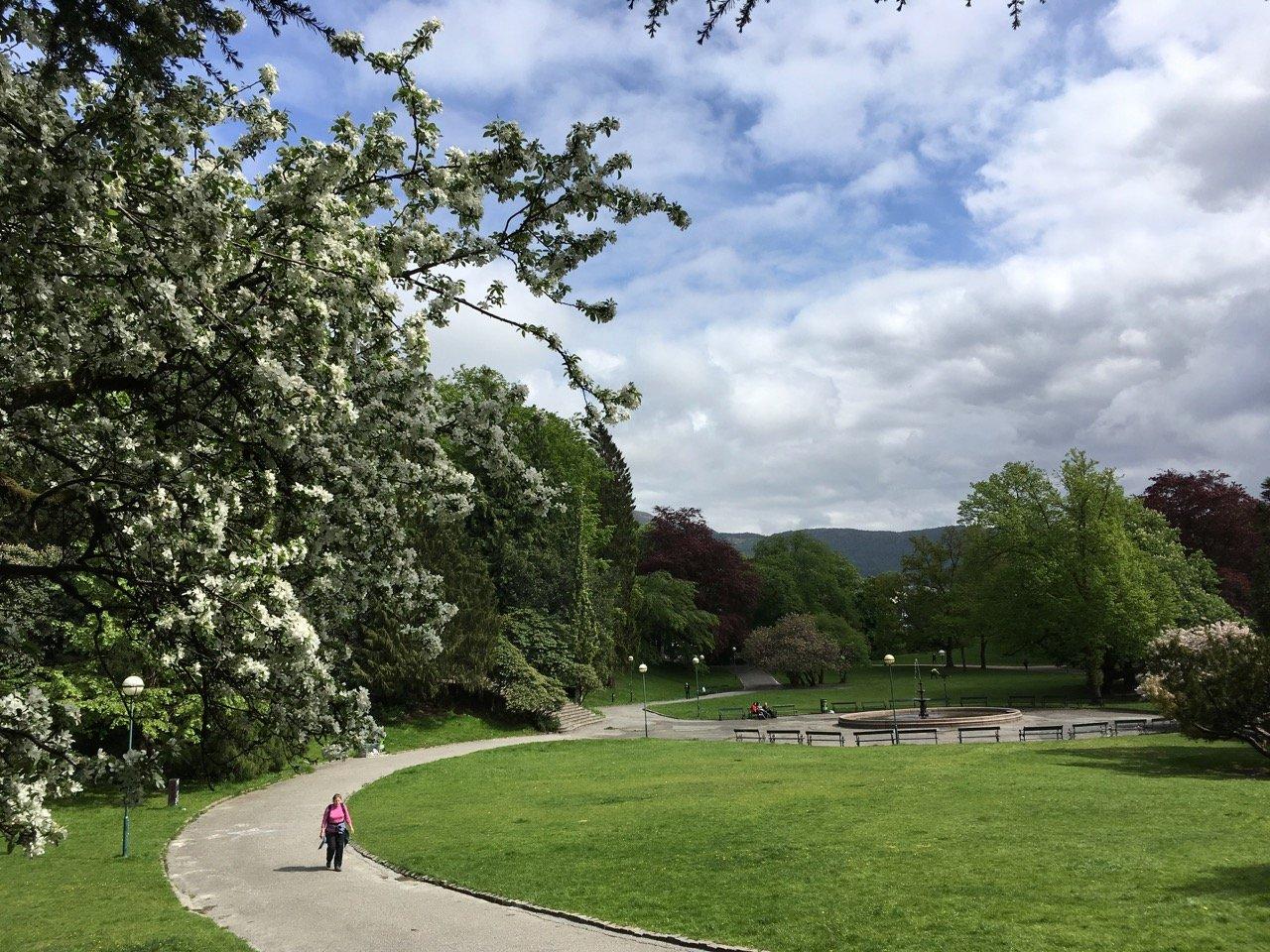 Nygårdsparken park, Møhlenpris