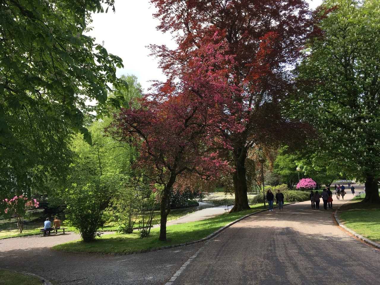 Nygårdsparken park. Photo.