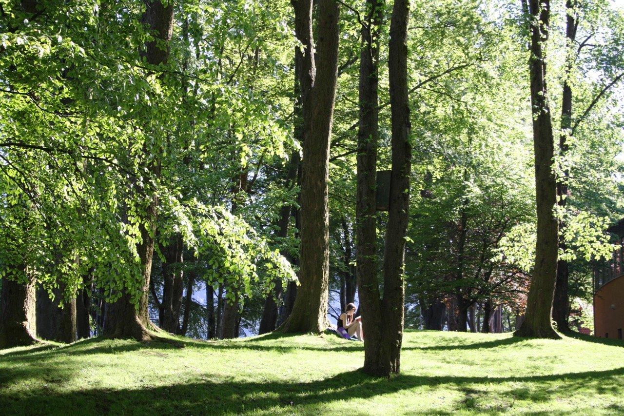 Nordnesparken