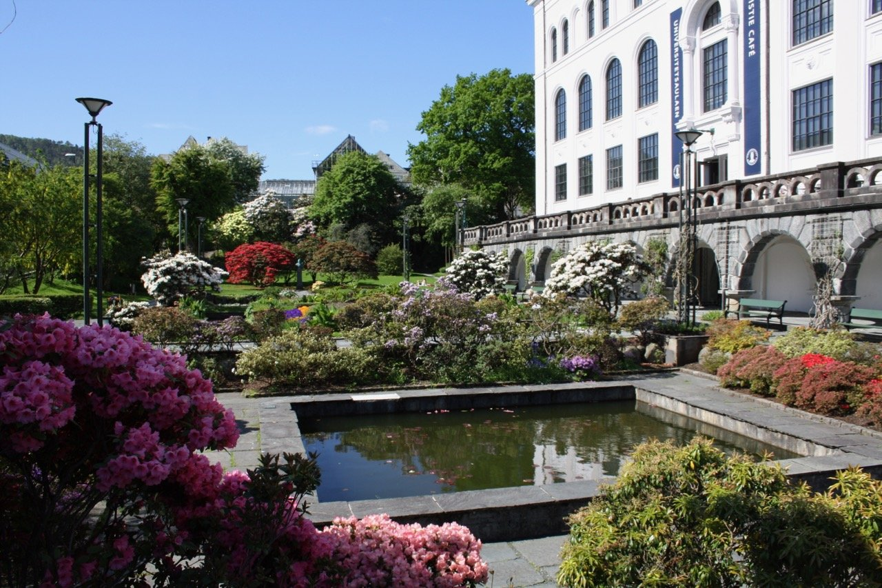 The museum garden, sorrounding Bergen Natural History museum. Photo.