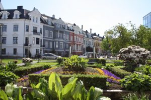 The Museum Garden, Bergen. Photo.