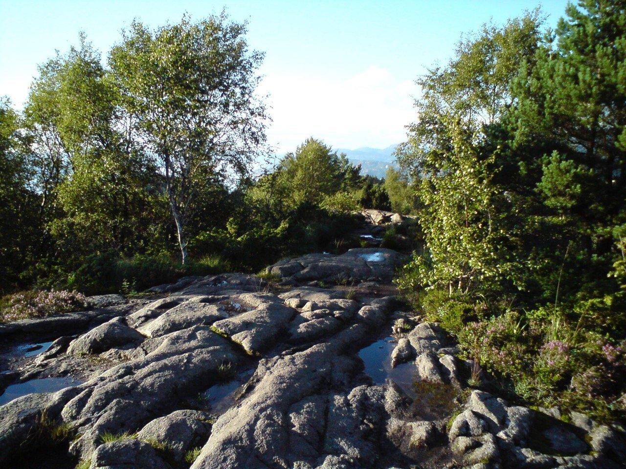 Løvstakken hiking
