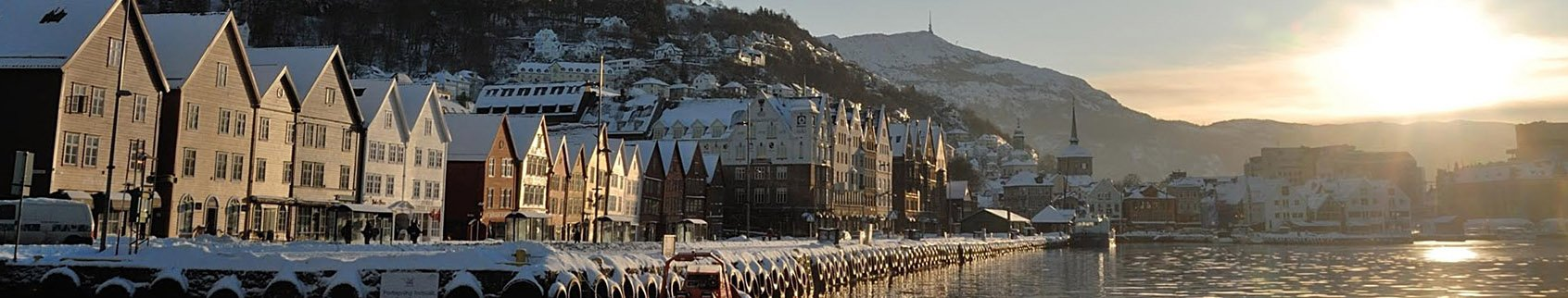 header-image tobergen.com